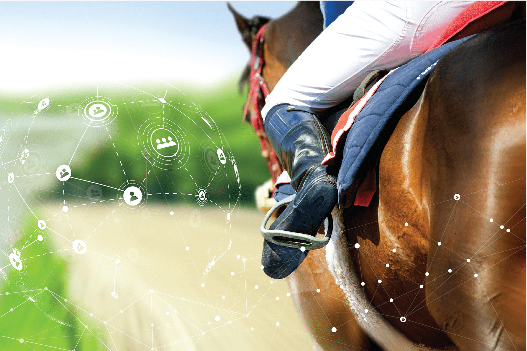 Standortvernetzung bei Krämer Pferdesport