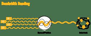 Bandwidth Bonding mit Peplink Mobility-Antenne und Speedfusion